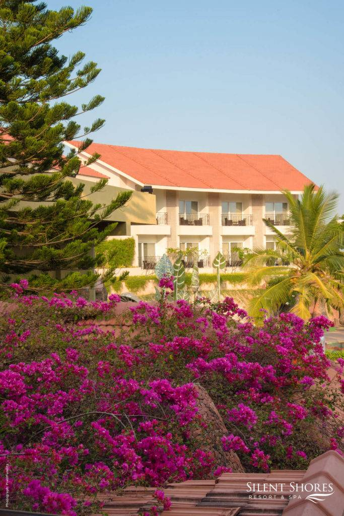 Garden and flowers overlooking Superior rooms in Mysore - 5 Star resort in Mysore - Silent Shores resort & spa